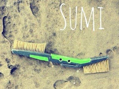 画像4: Flashed SUMI Brush 全3色